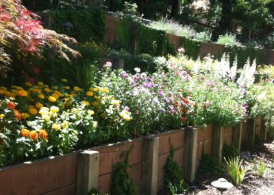 ortamentals-flower-beds-017