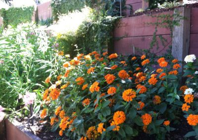 ortamentals-flower-beds-024